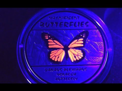 Congo Magnificent Butterflies Four coin Set Silver UV inks Colored 120 Francs 2014