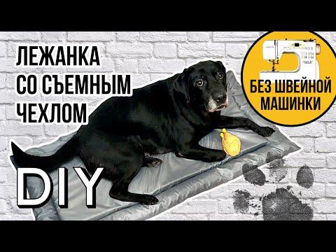 Лежанка для большой собаки своими руками мастер класс