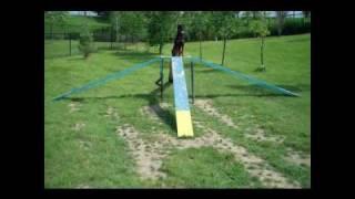 Unleash Dog Training - Shade Visits The Brampton Dog Park