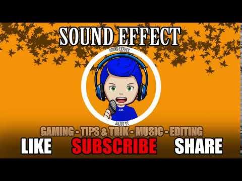 suara-teriakan-penonton---sound-effect