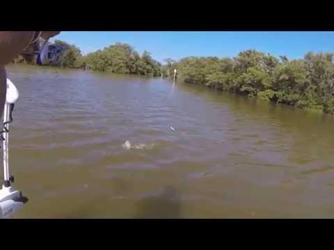 Fishing Hot Spots