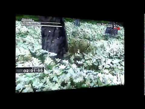 MGS3 Snake Vs The Boss CQC Webcam