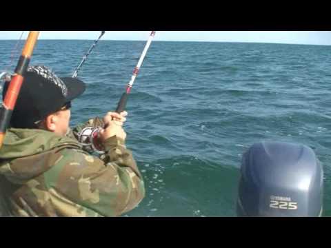 Cau Ca: Stripe Bass 4