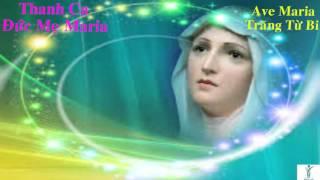 Ave Maria Trăng Từ Bi