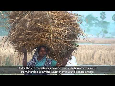 Women take the lead on climate change adaptation