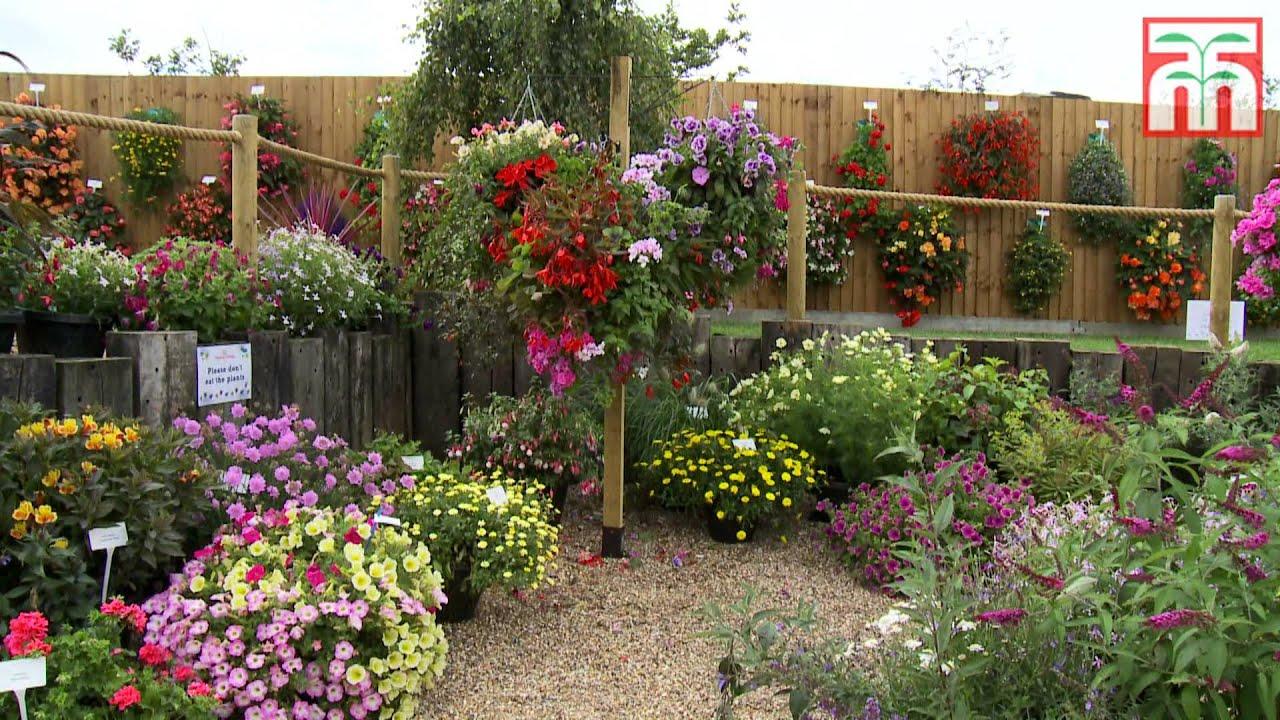 Thompson & Morgan\'s Garden Plants at Jimmy\'s Farm 2015 - YouTube