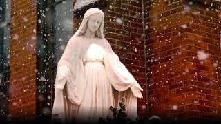Immaculate Mary [w/ lyrics]   Catholic Hymn