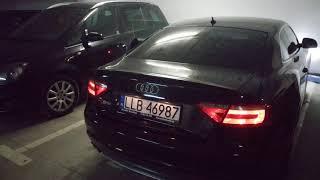 Orginal Sound Audi S5 V8