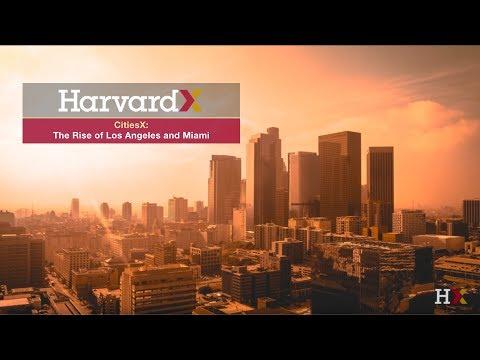 The Consumer City - Urban Pleasures - The Rise of Los Angeles & Miami