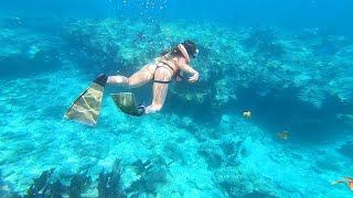 Snorkeling | Key West, Florida (World's Third Largest Coral Reef)