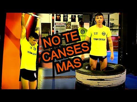 Circuito de entrenamiento para Artes Marciales / MMA