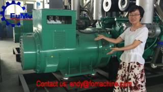 cummins diesel generator price list quiet generator best electric generator home use(, 2016-06-24T07:23:53.000Z)