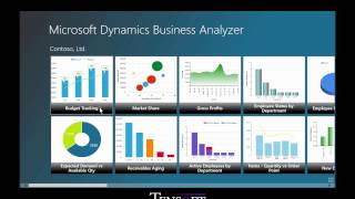 Customer Training: Executive Access to Information in Microsoft Dynamics GP