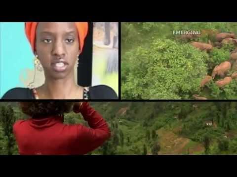 Rwanda Tourism, Rwanda - www.africareport.com