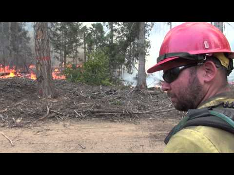 Firefighter's Perspective: Q&A with Local Firefighter Nolan Roth - USFS Colville National Forest