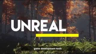 Review : Unity VS. Unreal Engine