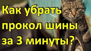 авито ульяновск авто с пробегом
