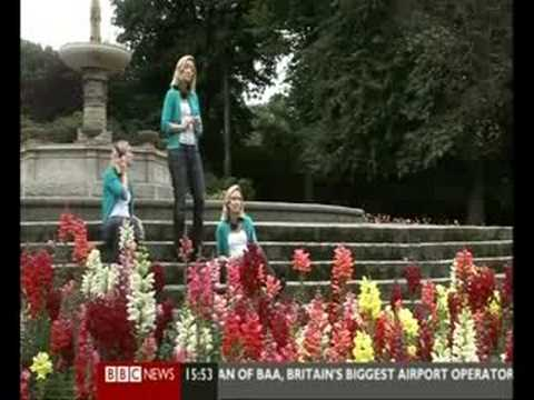 Matt Ashford on BBC News 24: Your News