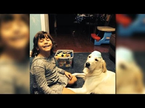 service-dog-keeping-an-eye-on-young-girl-with-epilepsy