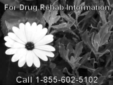 Top Government Based Drug Rehab Centers San Diego Near Bryan