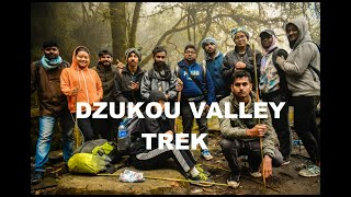 Trek to Dzukou Valley | Vlog | Nagaland | #tourof2019 | North-East India | PRITAM DAS D27
