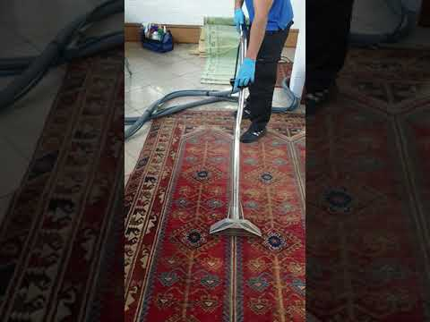 Persian Rug Cleaning By Vip Carpet