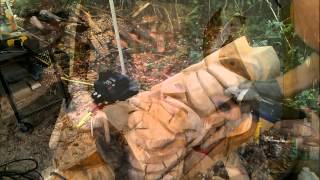 Fleur-de-lis Tiki Wood Carving