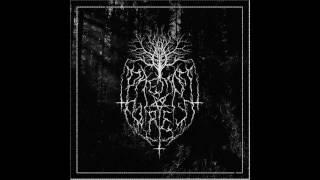 Daemon Forest - Dissonant Walk (EP release 2017)