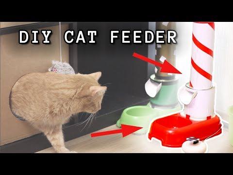 HOW TO BUILD A SMART ARDUINO CAT FEEDER