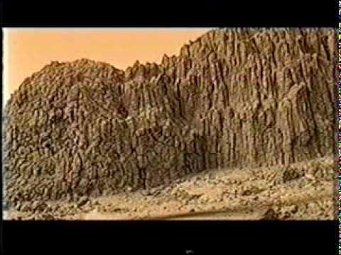 Charrito Negro - Somos Tierra