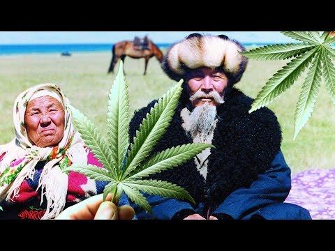 Free Weed in Kazakhstan!