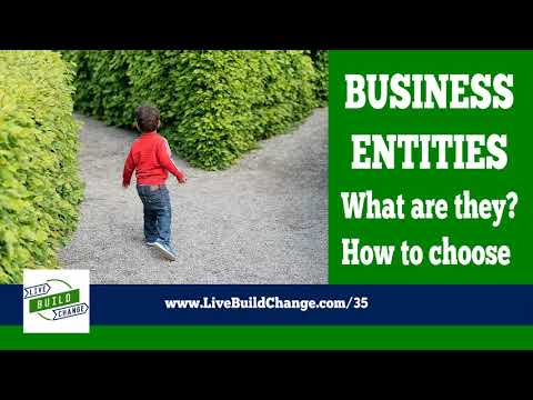 Types of Companies: Choosing the Best Business Entity for You [Ep #35]
