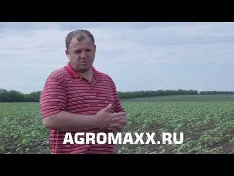Отзыв о применении Удобрения АГРОМАКС - в открытом грунте по Свекле и Подсолнечник. Результаты есть