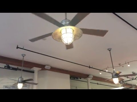 3 home decorator collection grayton ceiling fans 54 in a pastries shop