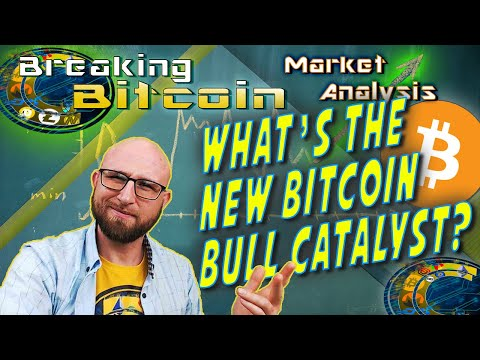 The New Bull Market Catalyst! KMD Staking, China, and Altcoin Investors