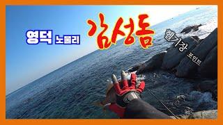 영덕 노물 헬기장 감성돔 낚시(포인트 수심.수중촬영 그…