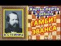 Шахматы ♔ Стейниц ♕ Шахматные ЛОВУШКИ в дебюте Гамбит Эванса!