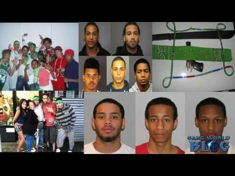 Trinitarios Dominican Gang History (NYC)