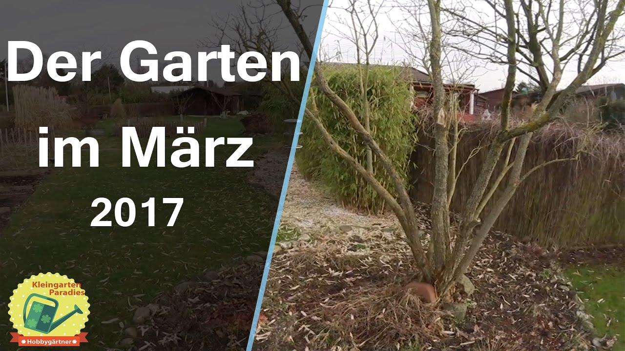 der garten im m rz 2017 erste aussaat rundgang youtube. Black Bedroom Furniture Sets. Home Design Ideas