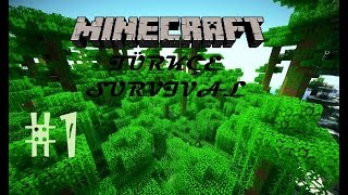 Minecraft Türkçe Survival : Elmas Peşinde - Bölüm 1