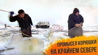 С Полем Зимний промысел корюшки на Крайнем Севере