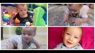 Best Baby Toys 3-6 Months - Must Haves for Babies