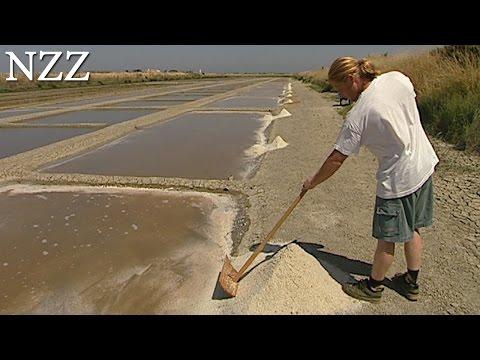 Salz: auf die Dosis kommt es an - Dokumentation von NZZ Format (2004)