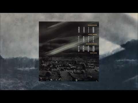 Rain Tree Crow (feat. David Sylvian) / Same (Full album)