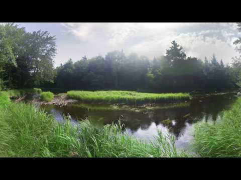 Kejimkujik National Park in 360°