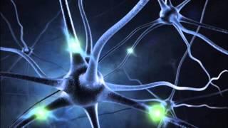 "Video ""MIRACLE"" NERVE REGENERATION - 16 Hz ALPHA BINAURAL BEATS MEDITATION MUSIC download MP3, 3GP, MP4, WEBM, AVI, FLV Agustus 2018"