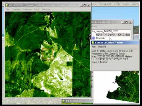 Creating and Evaluating an NDVI Image in ENVI Classic