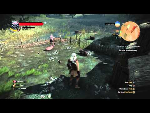 The Witcher 3 Unlimited Food and Money Glitch (No Monsters Spawn)