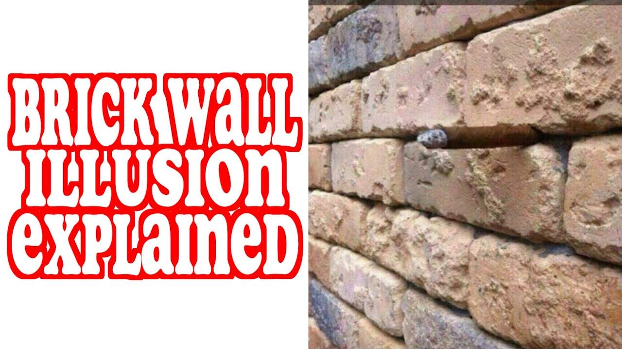 Brick Wall Illusion Explained Mully
