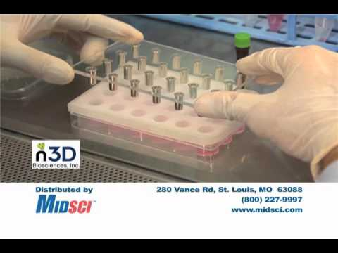 3D Cell Culture From N3DBIO